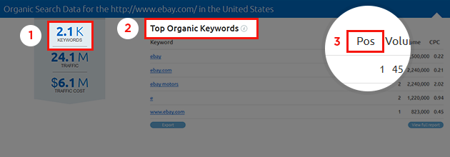 SEMrush: New look: now it's the URL reports' turn! image 1