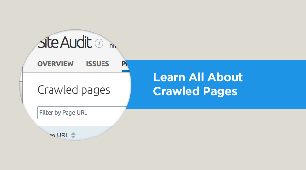View information on all crawled pages