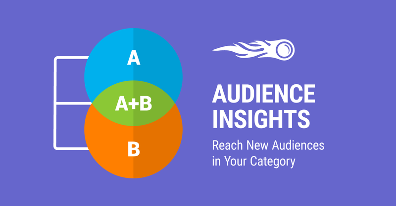 SEMrush: Reach Your Target Customers with Audience Insights Research image 1